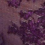 Plus Size Lingerie: Sexy Lingerie: African Violet Paramour™ Captivate Lace Bikini - 635005