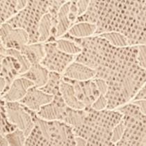 Women: Panties Sale: Latte Maidenform All Over Lace Tanga - DM0008