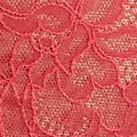 Boxer Briefs for Women: Honeysuckle Wacoal Retro Chic High-Cut Brief - 841186