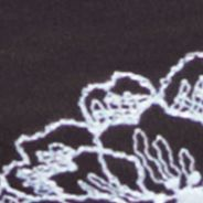 Women's Bikini Underwear: Black/Raindrop Wacoal Fragile Drama Bikini - 843250