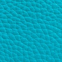 Handbags & Accessories: Coach Handbags & Wallets: Dk/Turquoise COACH SWAGGER 21 CARRYALL IN PEBBLE LEATHER