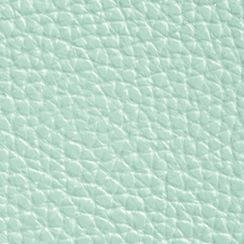 Women: Coach Accessories: Sv/Seaglass COACH POLISHED PEBBLE LEATHER DOUBLE ZIP WALLET