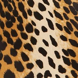 Totes: Leopard Totes Ladies Micro 'Brella Manual Compact Umbrella