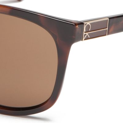 Fashion Sunglasses: Soft Tortoise Calvin Klein Large Surf Style With Metal Plaque Sunglasses