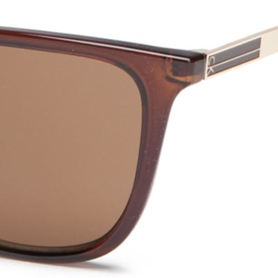 Cat Eye Sunglasses: Crystal Brown Calvin Klein Modified Cat With Large Metal Plaque Sunglasses