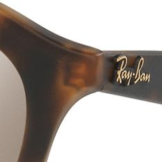 Guys Sunglasses: Havana Ray-Ban Gatsby Sunglasses