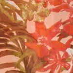 Women's Shrugs: Orange Collection XIIX New Horizons Printed Kimono