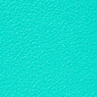 Handbags and Wallets: Sea Foam Dooney & Bourke Rebecca Hobo