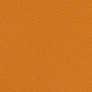 Shopper Bags: Caramel Dooney & Bourke Pebble Small Lexington shopper