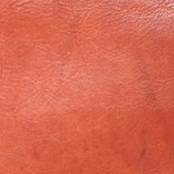 Frye Accessories: Burnt Red Frye Campus Zip Tote