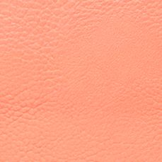 Handbags & Accessories: New Directions Handbags & Wallets: Coral New Directions Jennifer Tote