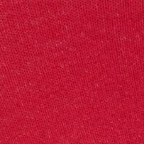 Dress Socks: Red Hot Sox Vote Socks - Single Pair