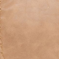 Handbags and Wallets: Tan/Khaki Red Camel Whipswitch Crossbody