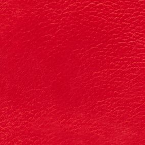 Handbags and Wallets: Real Red Fossil Explorer Crossbody