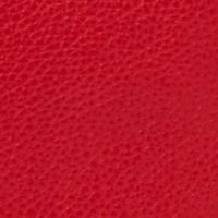 Fossil: Real Red Fossil Emerson Satchel