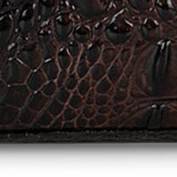 Designer Handbags: Cocoa Brahmin Melbourne Collection Mini Asher Satchel
