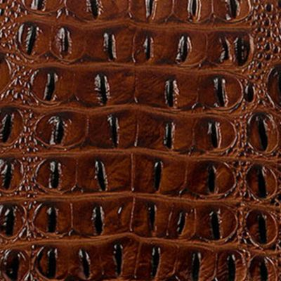 Brahmin Purses: Pecan Brahmin Melbourne Collection Medium Asher Tote