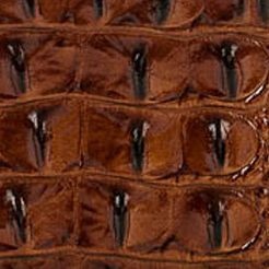 Handbags and Wallets: Pecan Brahmin Melbourne Collection Harrison Hobo