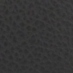 Small Handbags: Black New Directions Vera Durango Mini Crossbody