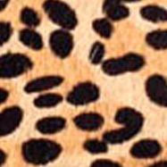 Matisse Shoes: Leopard Cowhair Matisse Arielle Sandal