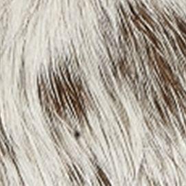 Matisse: White/Brown Matisse Kerr Bootie