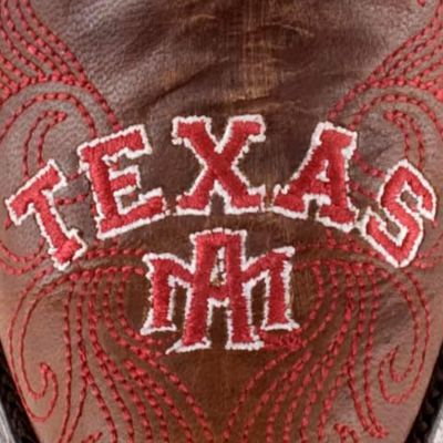 Gameday Boots Women's: Brass Gameday Boots Women's Texas A&M University Tall Boot