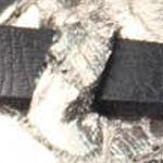 Blowfish Women's: Black Pisa Blowfish Badot Sandal