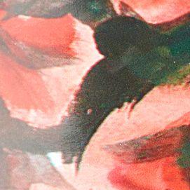 Booties for Women: Wildrose Cougar Regent Boot
