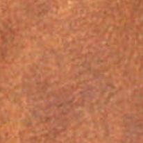 Booties for Women: Brown C. Label Alamo 2 Fringe Shootie