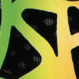 Asics Footwear: Multi ASICS Gel Noosa Tri 9 Running Shoe