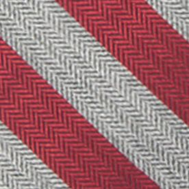 Young Mens Neckties: Charcoal/Red Saddlebred Men's Ionia Stripe Tie