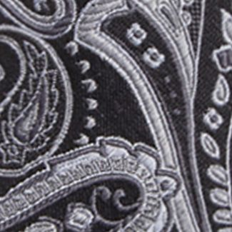 Men: Neckties Sale: Black/Silver Saddlebred Men's Salford Paisley Tie