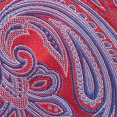 Young Men: Saddlebred Accessories: Red Saddlebred Salford Paisley Tie