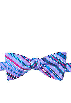 Saddlebred Reversible Stripe Dot Bow Tie
