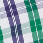 St Patricks Day Outfits For Men: Verdant Green IZOD Long Sleeve Plaid Durham Poplin Button Down Shirt
