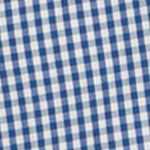 Comfortable Casual Shirts for Men: True Blue IZOD Advantage Stretch Gingham-Checked Shirt