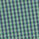 Comfortable Casual Shirts for Men: Verdant Green IZOD Advantage Stretch Tonal Gingham Shirt