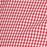 Izod: Real Red IZOD Big & Tall Long Sleeve Iconic Stretch Gingham Woven Shirt