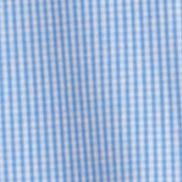 Casual Button Down Shirts for Big and Tall Men: American Dream IZOD Big & Tall Mini Check Essential Woven Shirt