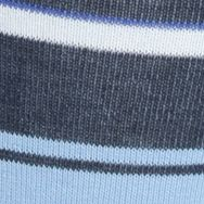 Designer Socks for Men: Light Blue Polo Ralph Lauren Block Stripe Crew Socks - Single Pair