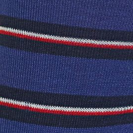 Mens Casual Socks: Royal Polo Ralph Lauren Mercerized Graph Stripe Crew Socks - Single Pair
