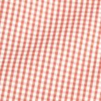 St Patricks Day Outfits For Men: Coral Saddlebred Short Sleeve Gingham Easy Care Woven Shirt