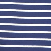 Short Sleeve T-shirts for Men: Navy/White Saddlebred 1888 Tailored Fit Stripe Tee