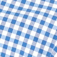 St Patricks Day Outfits For Men: Blue/White Saddlebred 1888 Gingham Tailored Oxford Shirt