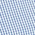 St Patricks Day Outfits For Men: Blue Mini Saddlebred Short Sleeve Mini Gingham Shirt