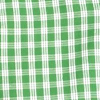 St Patricks Day Outfits For Men: Green/White Saddlebred Short Sleeve Easy Care Medium Plaid Shirt