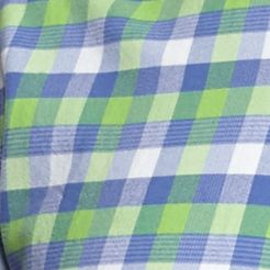 Mens Casual Shirts: Check & Plaid: Green/Blue/White Saddlebred 1888 Tailored Gingham Oxford Shirt
