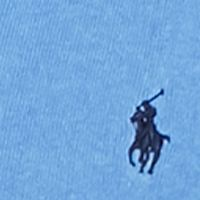 Mens Winter Sweaters: Atlantis Blue Polo Ralph Lauren Pima V-Neck Sweater