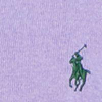 Mens Winter Sweaters: Spanish Purple Polo Ralph Lauren Pima V-Neck Sweater