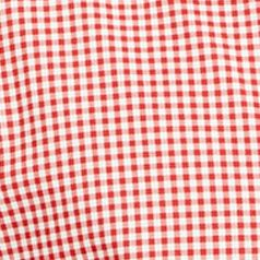 St Patricks Day Outfits For Men: Red Gingham Polo Ralph Lauren POPLIN 102G PERI GING